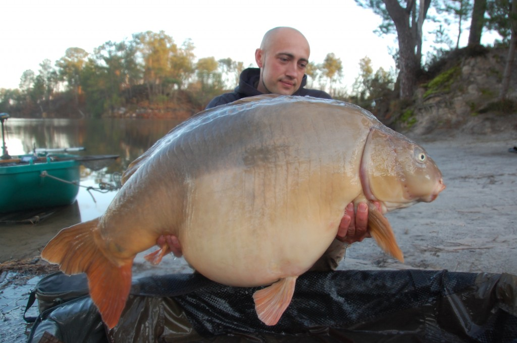 25.80kg