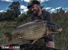 Big Carp Baits