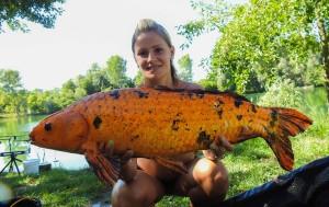Jet Fish