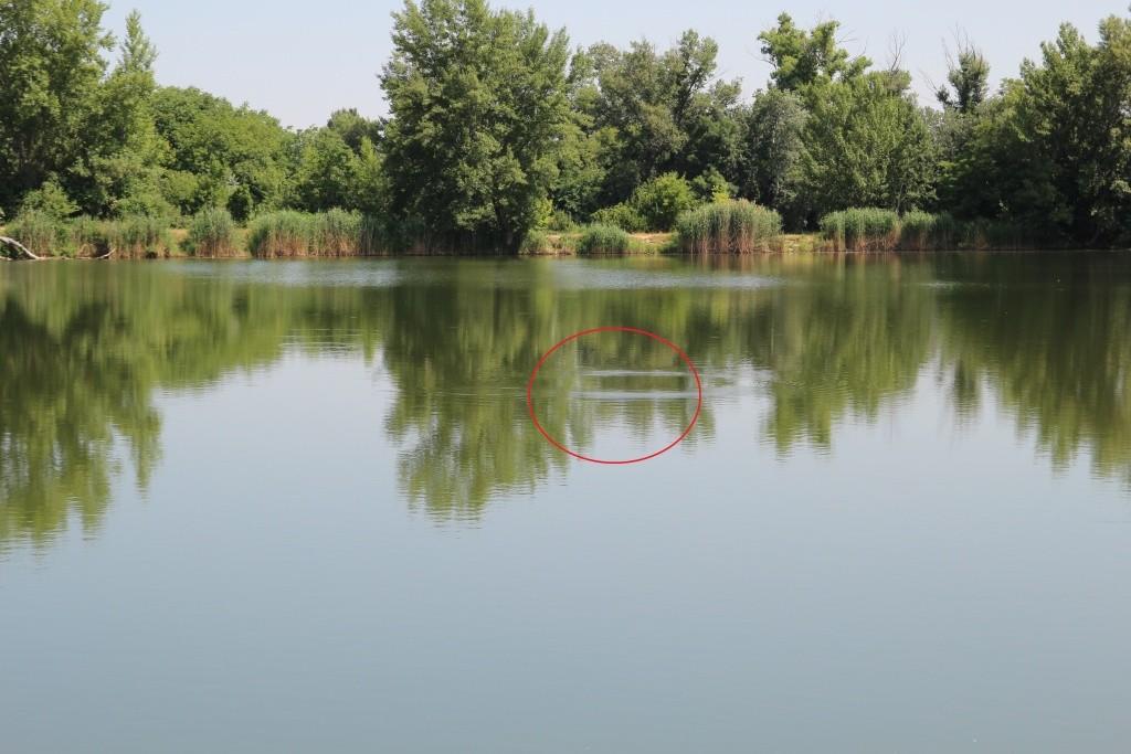 18-vyskakovanie-ryb-nad-vodnu-hladinu-nam-casto-prezradi-to-spravne-miesto-kam-nahdit-nase-pasce