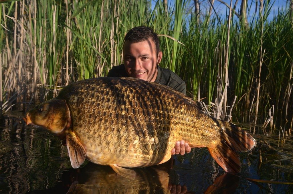 RS1 je selektívnou príchuťou na veľké ryby