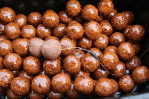 4c - Ako nástrahu použijeme predmočený boilies a nakŕmime tým napdipovaným