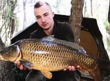 Po stopách kaprů - Wild Fishing