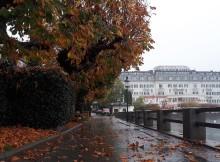 Jeseň v meste