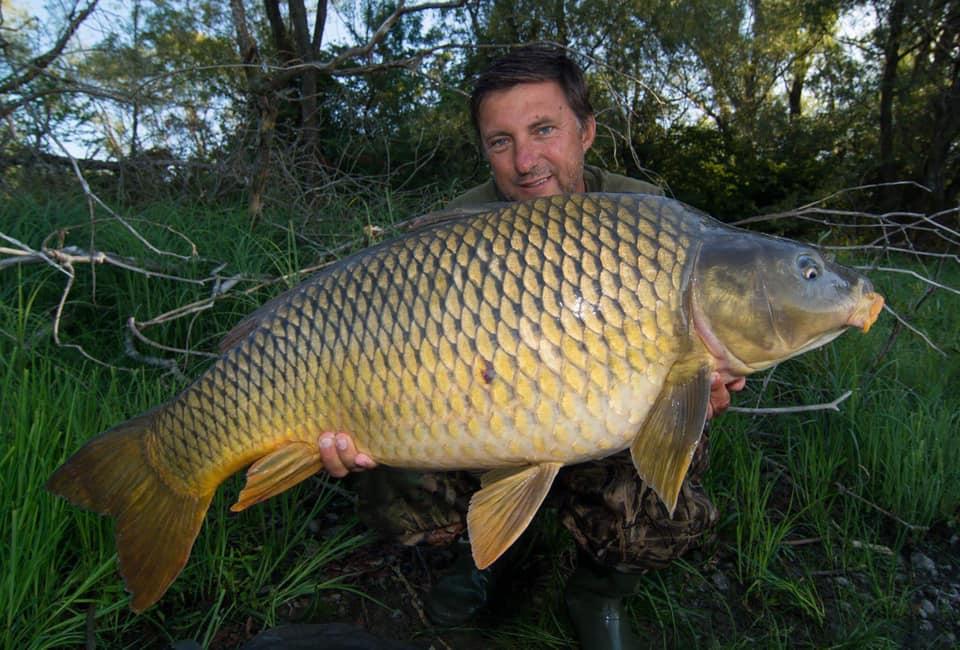 Jedna z rýb zo Zemplínskej Šíravy chytená na prechode medzi tvrdým a määkkým dnom na SK30
